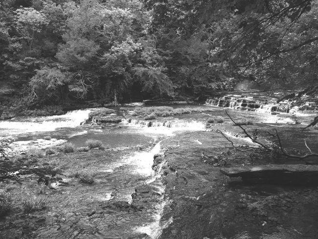 Black And White EyeEm Best Shots EyeEm Best Edits Nature Tadaa Community Blackandwhite Nature EyeEm Nature Lover Landscape Eye Em Around The World