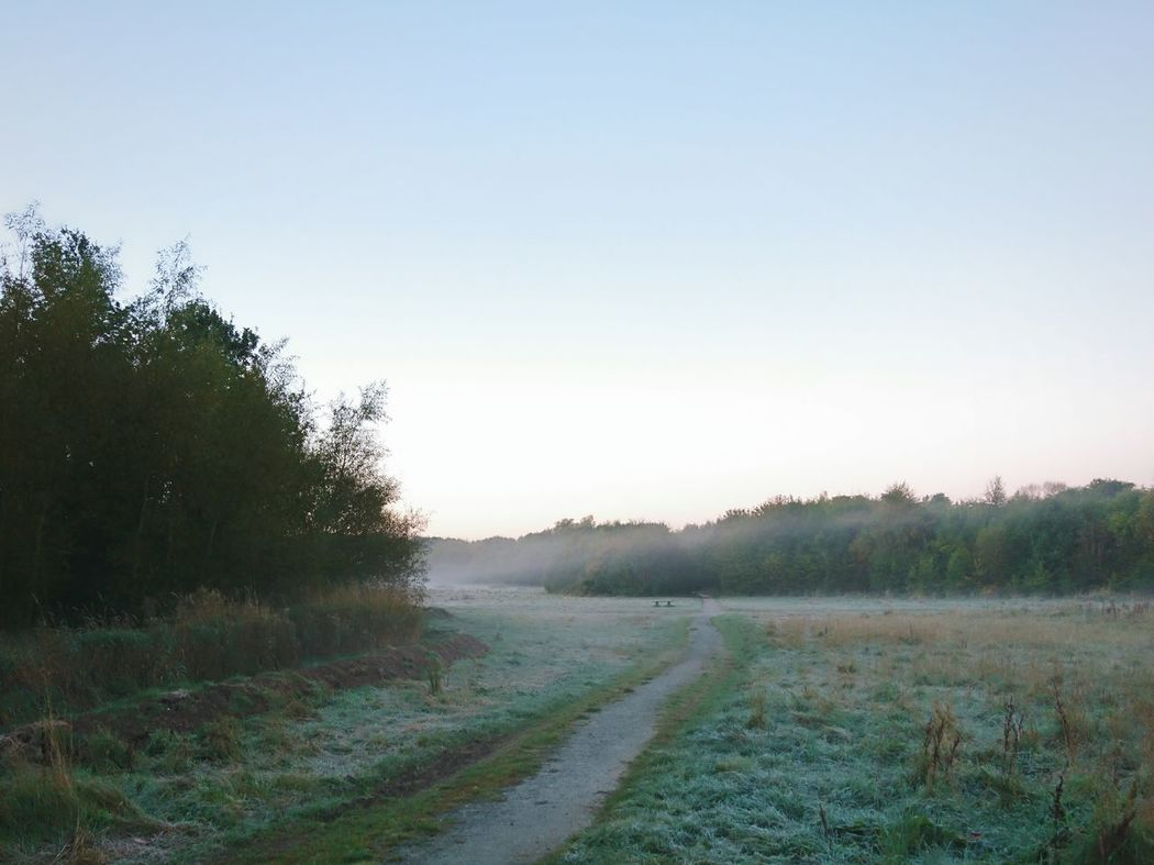 First Frosty Morning Winter Morning Cloud - Sky Sky Sunrise - Dawn Rural Scene Frosty Morning First Frost Frost