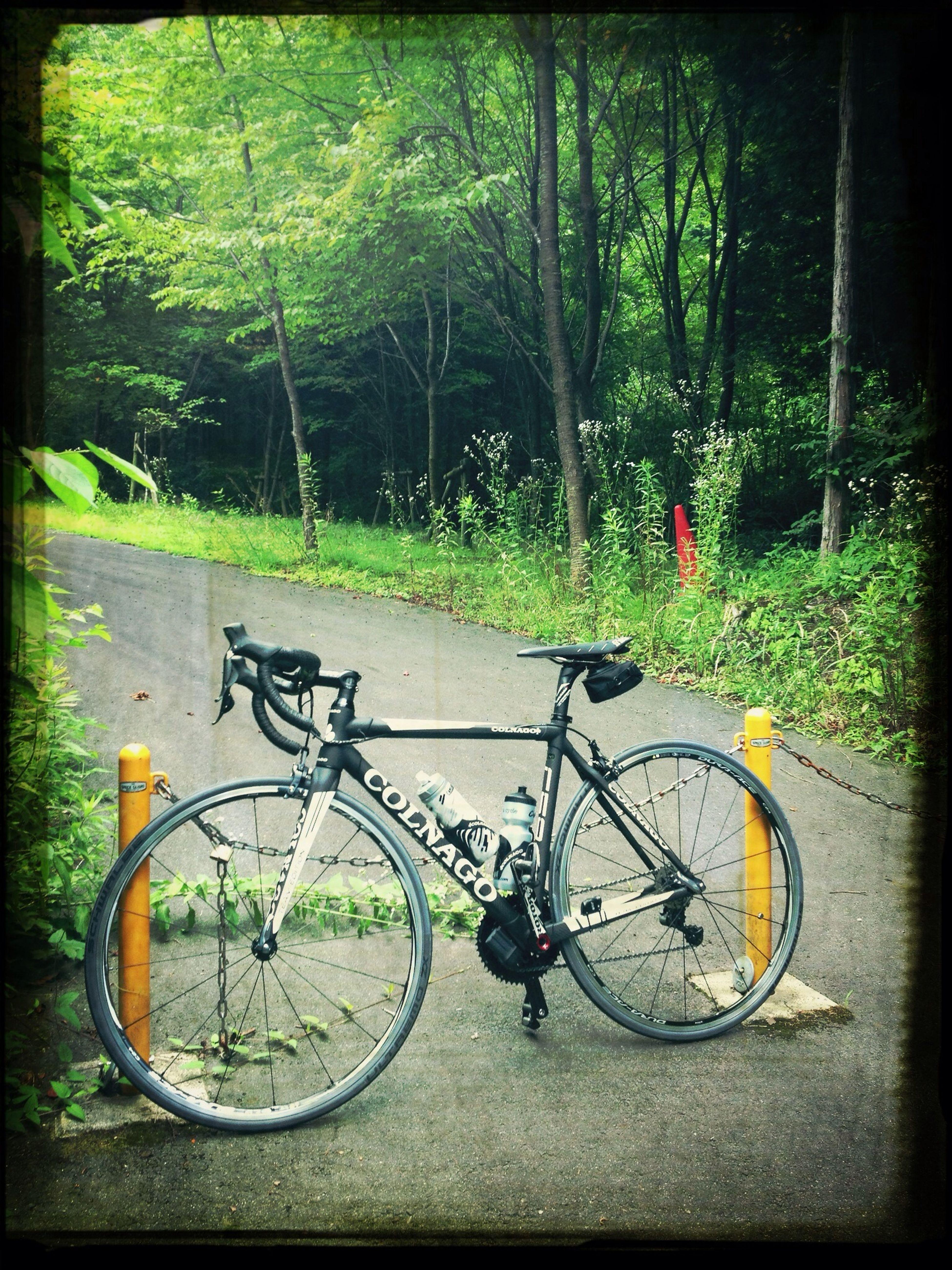 Bike Roadbike