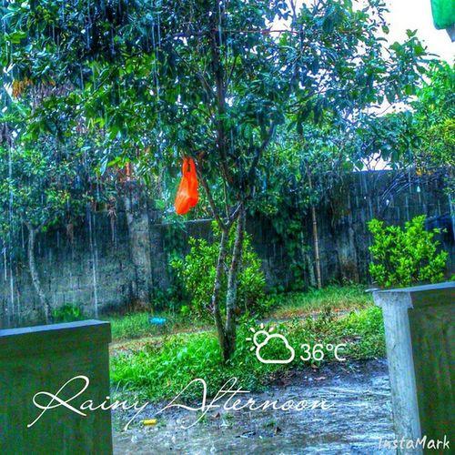 Goodaftee RainyAfternoon Saraplamighangin Hayahay Gonnasleepagain :)