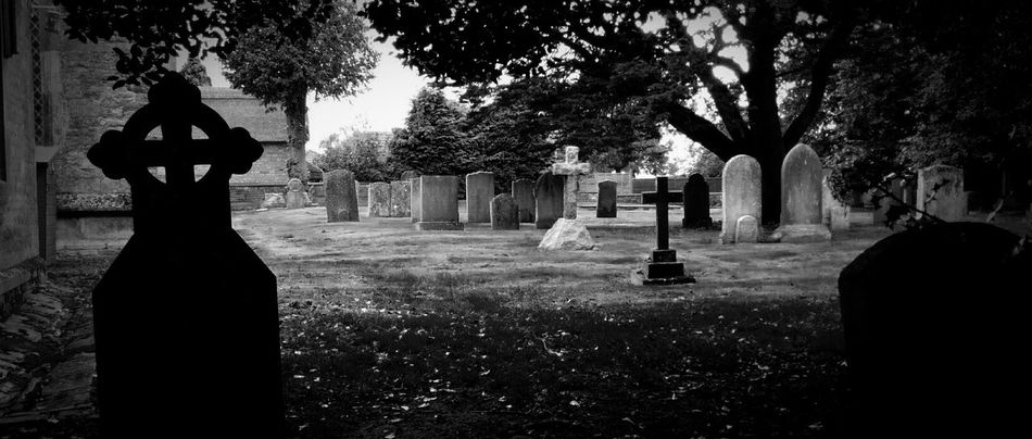 The EyeEm Facebook Cover Challenge Graveyard Beauty Landscape_Collection Rural Scenes Darkness And Light