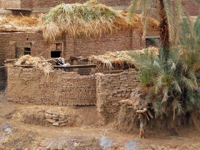 Architecture Bauernhof Built Structure Leben Am Fluss Nile River Old Outdoors Ägypten