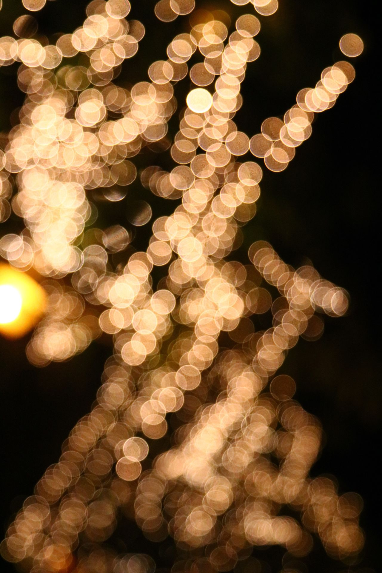 Blurredbackground Blurred Lights Blurred Blurred Background Illuminated Celebration Christmas Decoration Christmas Christmas Tree Night Christmas Lights Hanging Tradition Defocused No People Christmas Ornament Burning Representing Close-up Advent Outdoors Blurred Motion