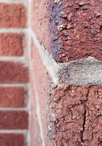 Brick Wall Brick Up Close Texture Rough Texture
