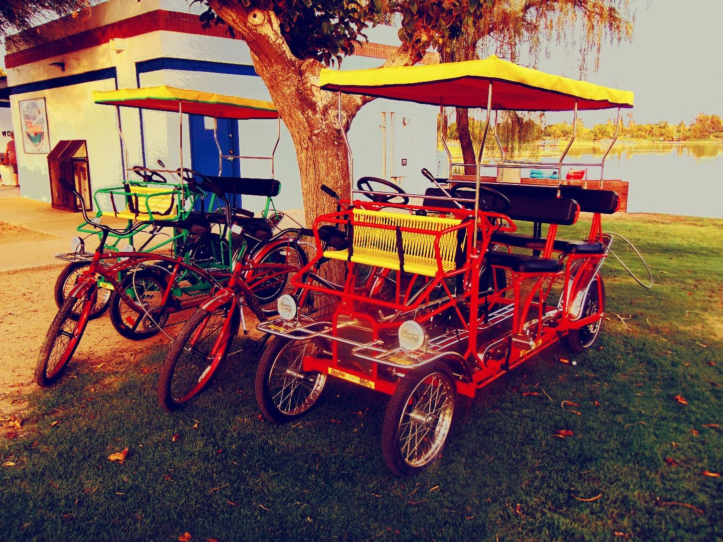 Absence Day Grass Mode Of Transport Multi Colored Nature No People Orange Color Outdoors Parked Parking Sky Stationary Colur Of Life.
