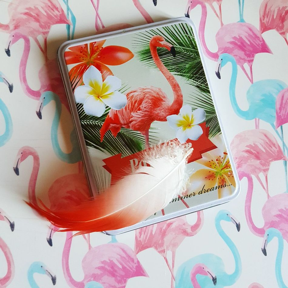 Flamingo Flamingolover Art And Craft Close-up Feather  Feather_perfection Mood Vibes Tropical Paradise Tropicalvibes Flamant Rose Millennial Pink