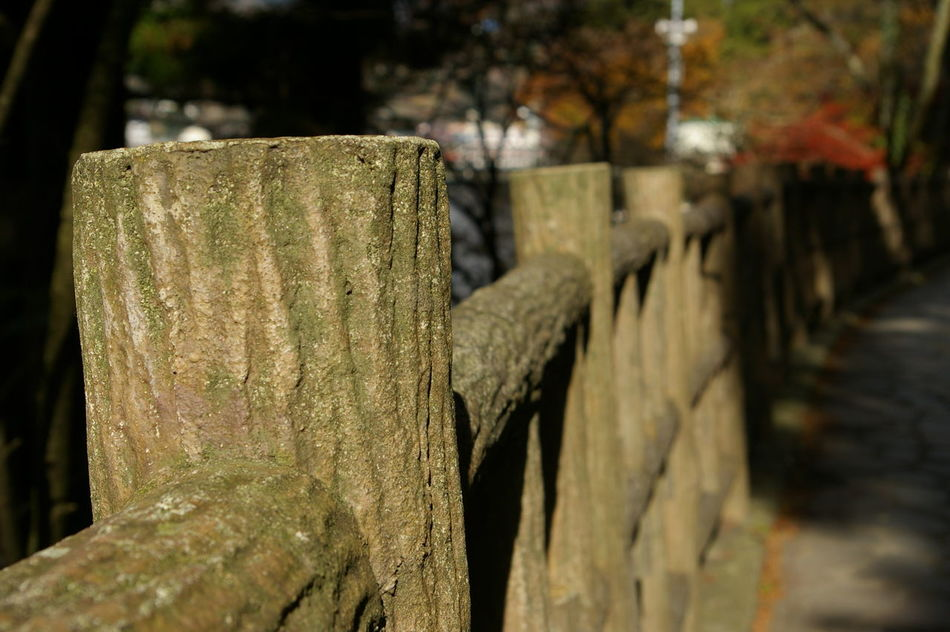 Ancent Close-up Day EyeEmNewHere Handrail  Japan Mountain Walks No People Outdoors Wood - Material
