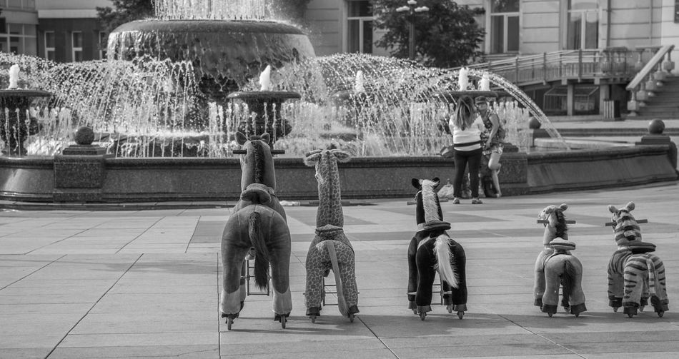 FOUNTAIN Street Photography Streetphotography Ulan-Ude Streetphotography_bw Streetphoto_bw Eyem Best Shots - Black + White Black And White Street Life Bw_lover Eye4photography