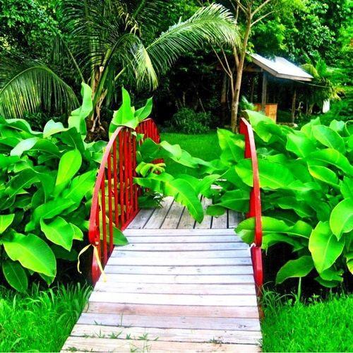 ENTER Nursery Grenada Summertime Colorporn_challenge Islandlife Buildinglover Islandlivity