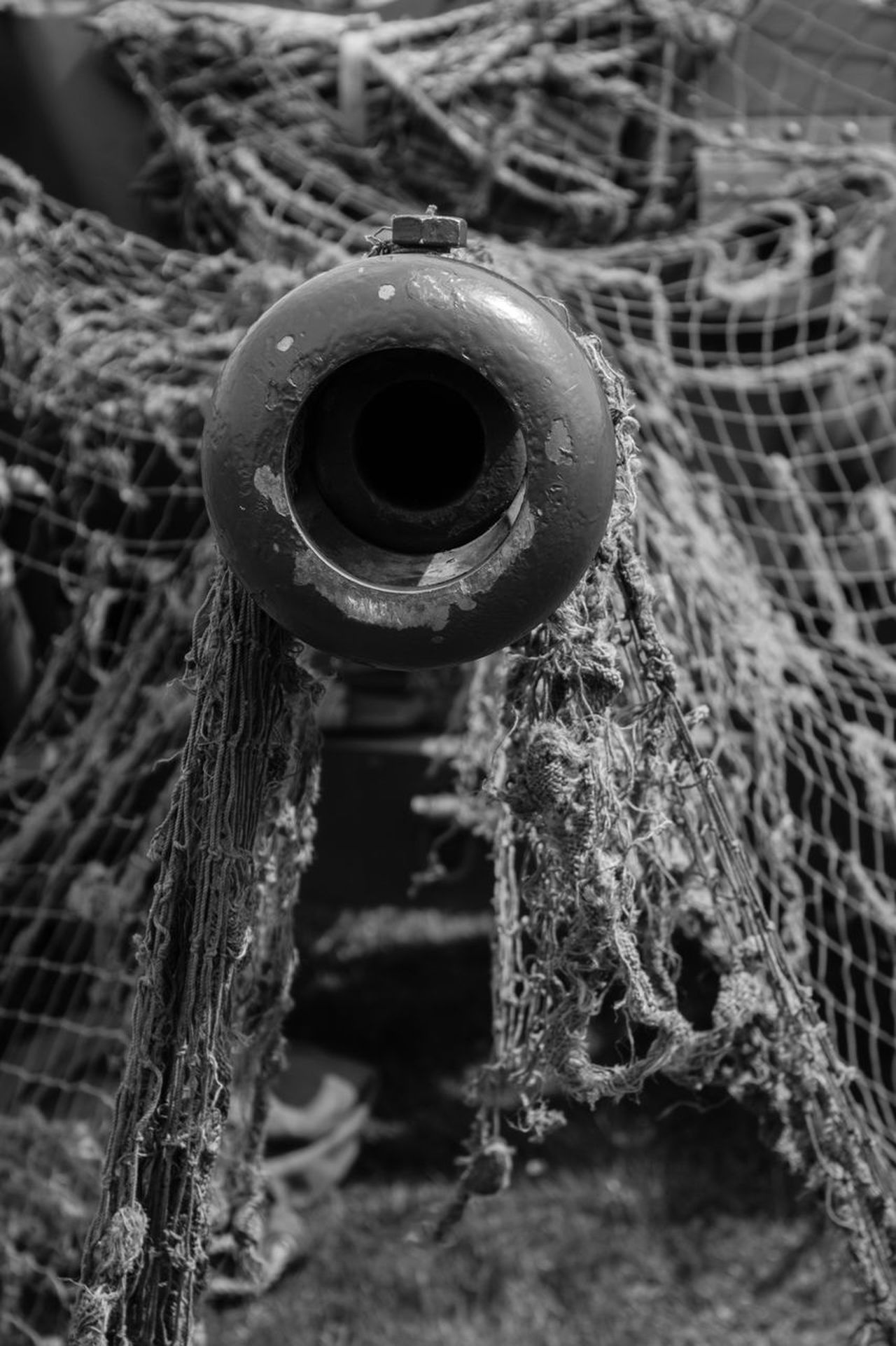 No People Focus On Foreground Close-up Day Outdoors Nature Water Cressing Temple Temple At War War Netting Defence Army Tank Military Blackandwhite Photography Blackandwhite