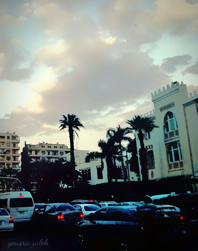 Street Photography Street City Life City Street City View  Cars Cars On The Road!! Traffic Flow Cars On The Street Cars Lights Cloudy Day Clouds And Sky Palms Palm Trees Palms Trees Buildings Buildings & Sky Building And Sky Building Structures Smartphonephotography Mobilephotography Outdoor Photography Architecture Cairo Egypt Love To Take Photos ❤