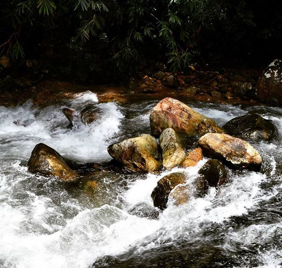 Witness the flow of nature! Waterfall Deepintothewoods Strongcurrent Keraladiaries