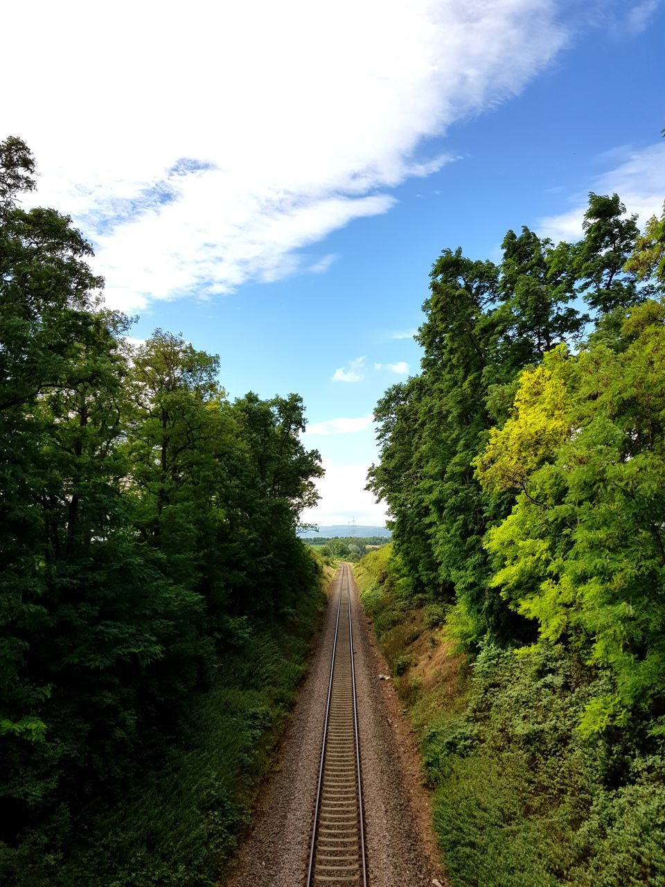railroad track, tree, railroad, sky, diminishing perspective, landscape, nature, transportation, rail transportation, track, no people, railway, railway track, scenics, blue sky, the way forward, plant, growth, beauty in nature, day, outdoors
