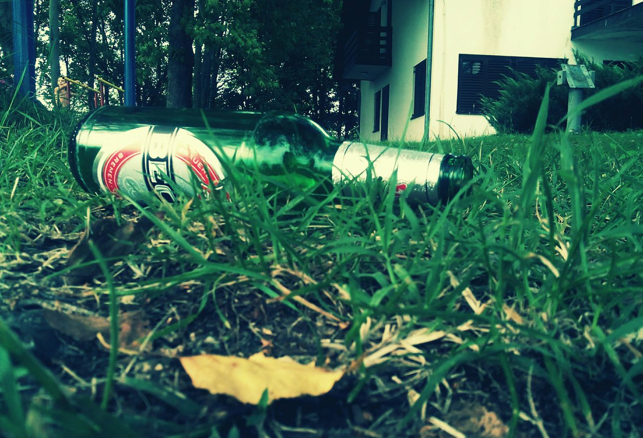 Becks, Beer, Summer