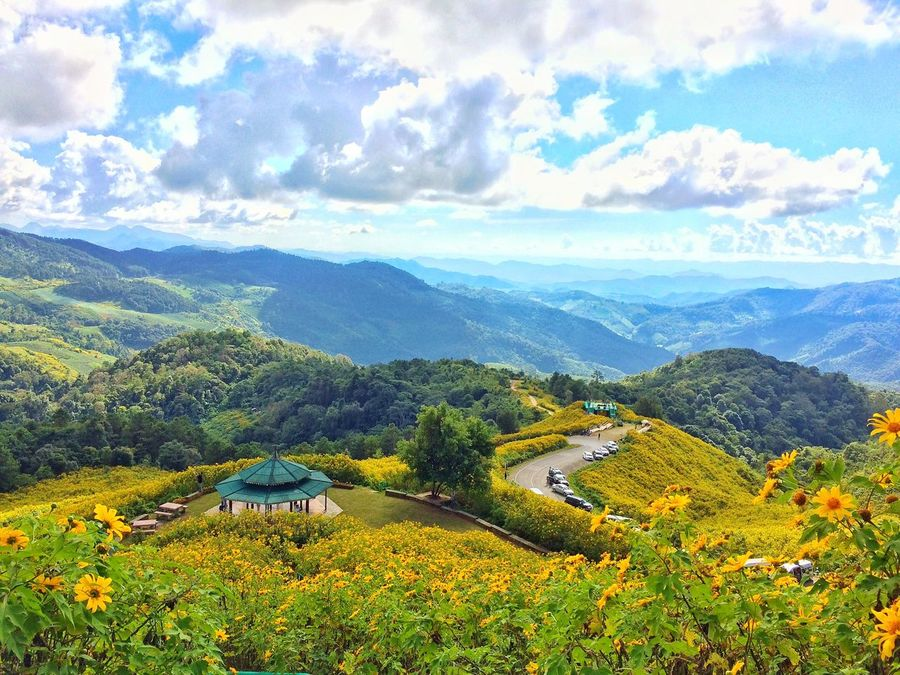 Mountain Scenics Nature Beauty In Nature Mountain Range Tranquil Scene Growth Sky Landscape Cloud - Sky Green Color Tree Agriculture Plant Outdoors Field Mexican Sunflowers Rural Scene Tranquility Idyllic Yellow Flower Thailand Hill Valley Miles Away Flying High