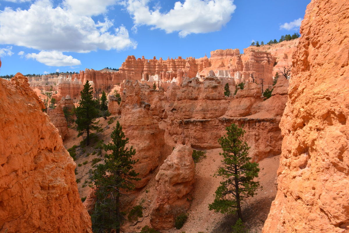 Beauty In Nature Bryce Canyon National Park Bryce National Park Canyon Cliff Extreme Terrain Famous Place Geology Idyllic International Landmark Landscape National Park Nature Non-urban Scene Physical Geography Remote Rock - Object Rock Formation Scenics Sky Tourism Tranquil Scene Tranquility Travel Travel Destinations