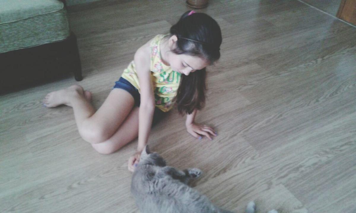 С кошечкой британкой ;)) #cat #cute #love Animal Love With Cat