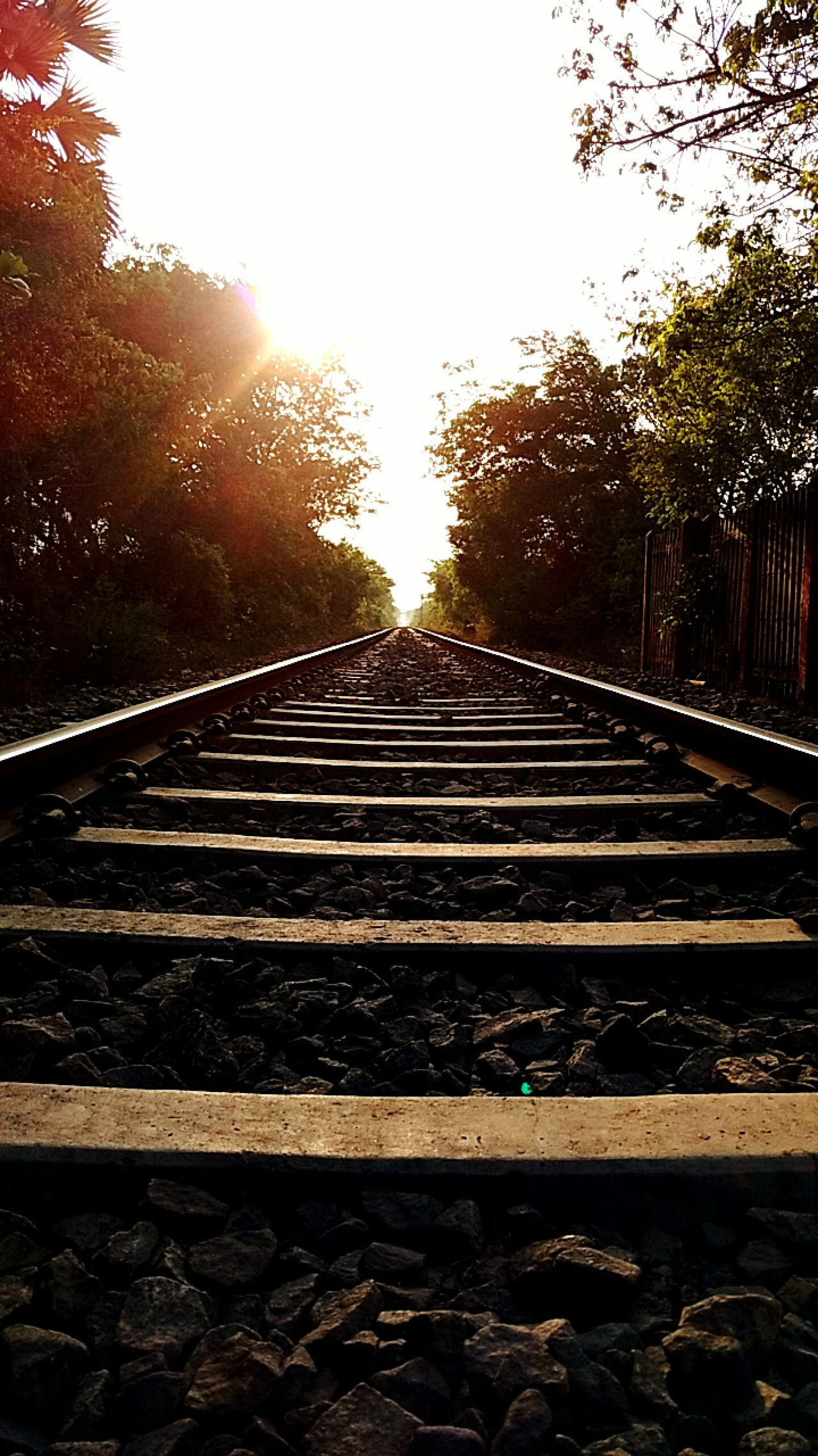 Train Tracks Track Track Life Life Is Journey Journey Travel Travelling Traintracks Track Train Finding New Frontiers