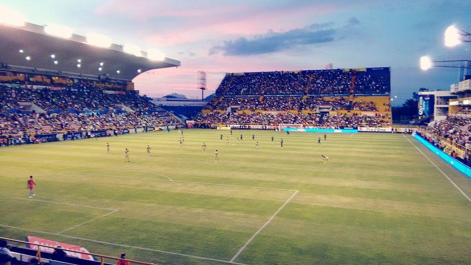 Dorados Stadium Futbol