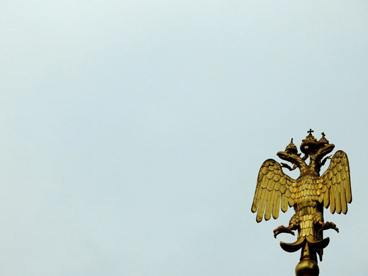 Blazon Two Headed Eagle Spas Na Krovi Sankt-peterburg Russia Golden Walking Around Architecture Streetphotography Fine Art Photography