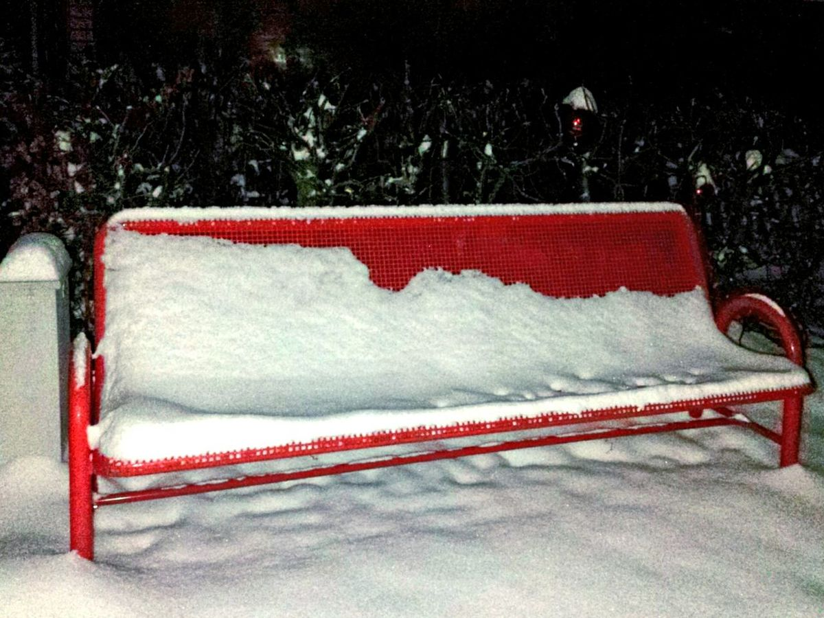 The Red Bench Snow Covered Snowy Scene Snow Let It Snow, Let It Snow.... Red And White Red Album White Album Red White And Green Showcase: January Ladyphotographerofthemonth Park Bench Park Benches Bench Lover  Benches In The Snow Beliebte Fotos Studies Of Whiteness Studies Of Colors WhiteCollection Red My Winter Favorites Winter Walk It's Cold Outside Showcase : January