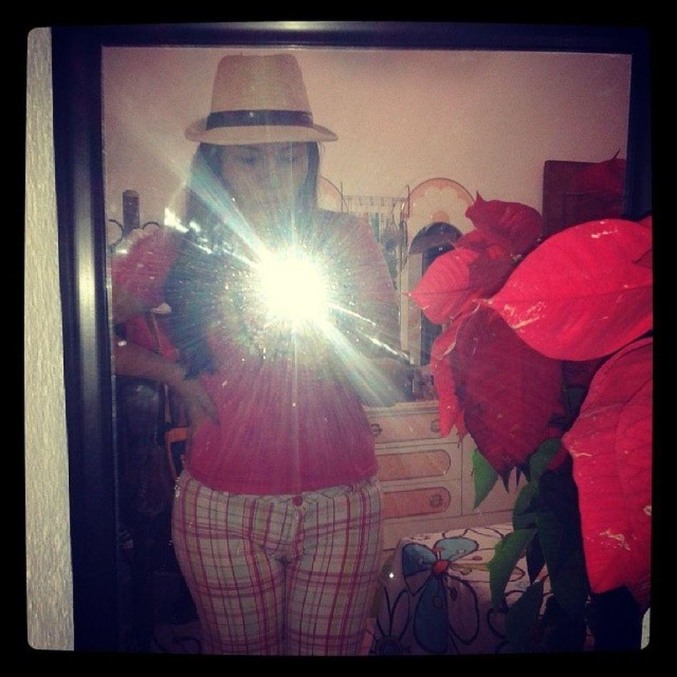 Salida DeRosa Sombrero Floripondia lml