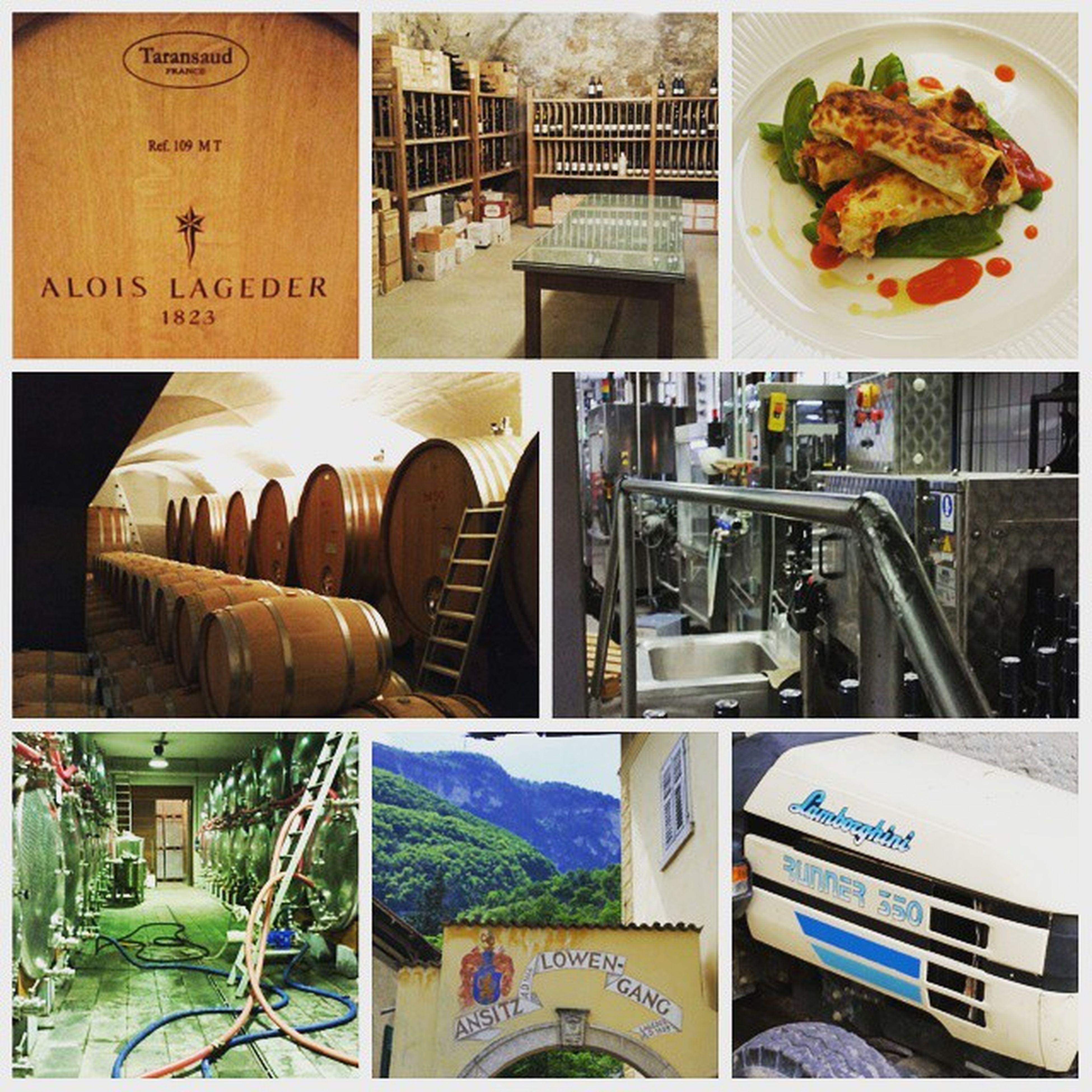 Wie im Paradies 😃🍷 Paradeis Lageder Lagrein Löwengang Südtirol Wein Wine Vino Lamborghini