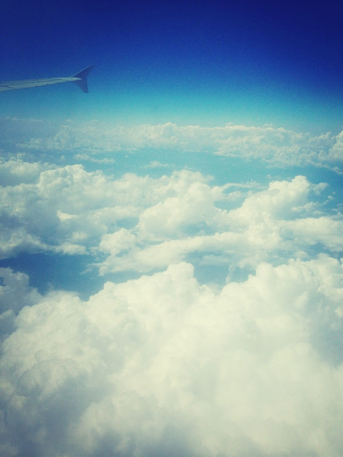 In The Clouds On My Way Home