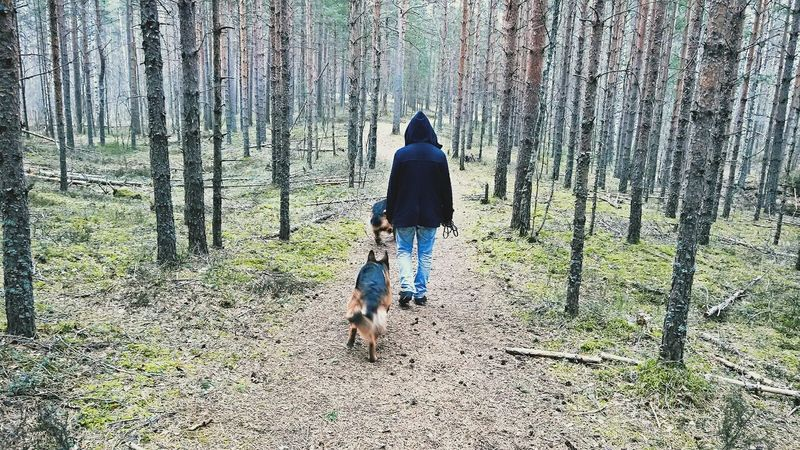 Real People One Person Full Length Tree Rear View Walking Nature Day Beauty In Nature Outdoors Pets Animal Themes Mammal Tallinn Estonia Leisure Activity EyeEmNewHere BYOPaper!