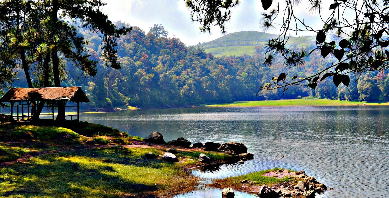 Landscape HDR Nature