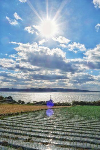 空 ソラ 海 灯台 畑 山 雲 自然 玉ねぎ Sky Sea Sea And Sky Lighthouse Plant Field Onion Onion Field Mountains トレッキング ウォーキング Sunlight Nature Cloud - Sky Beauty In Nature Reflection