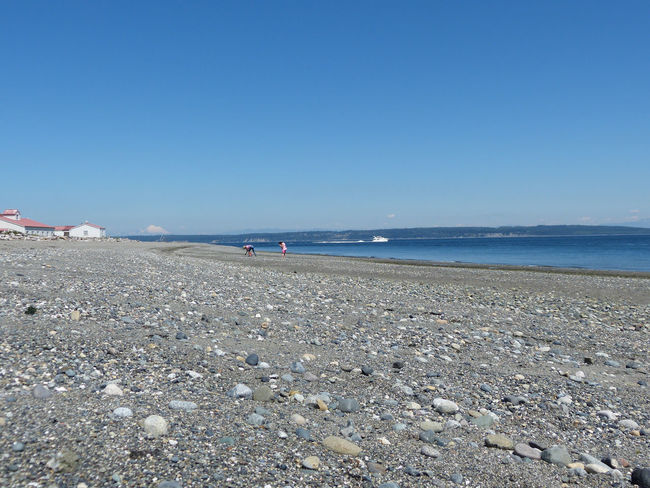 Beach Beach Photography Beachcombing Beachphotography Beauty In Nature Boat Cascade Mountains Clear Sky Horizon Over Water Mt. Baker Nature Puget Sound Puget Sound, Washington Scenics Sea Shore Surface Level Water