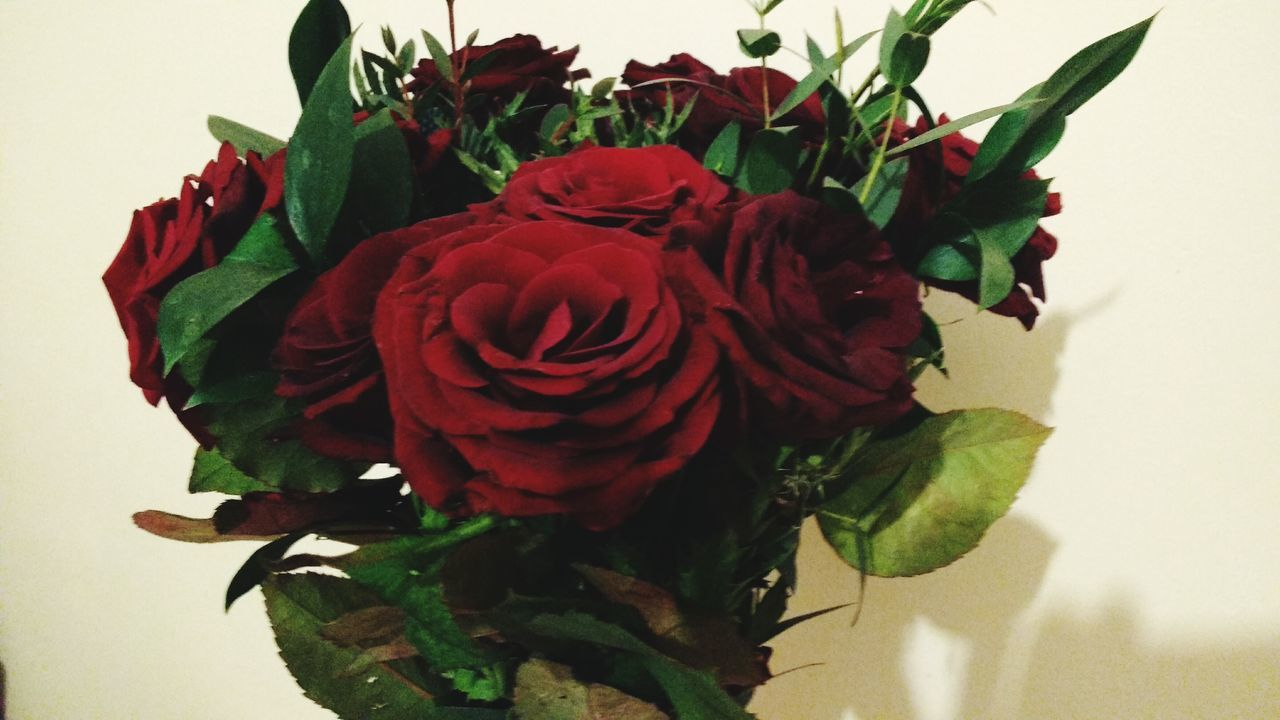 Roses Love ♥ Partner Ilovemyboyfriend♥ Stvalentinesday Red Redflowers Bouquet