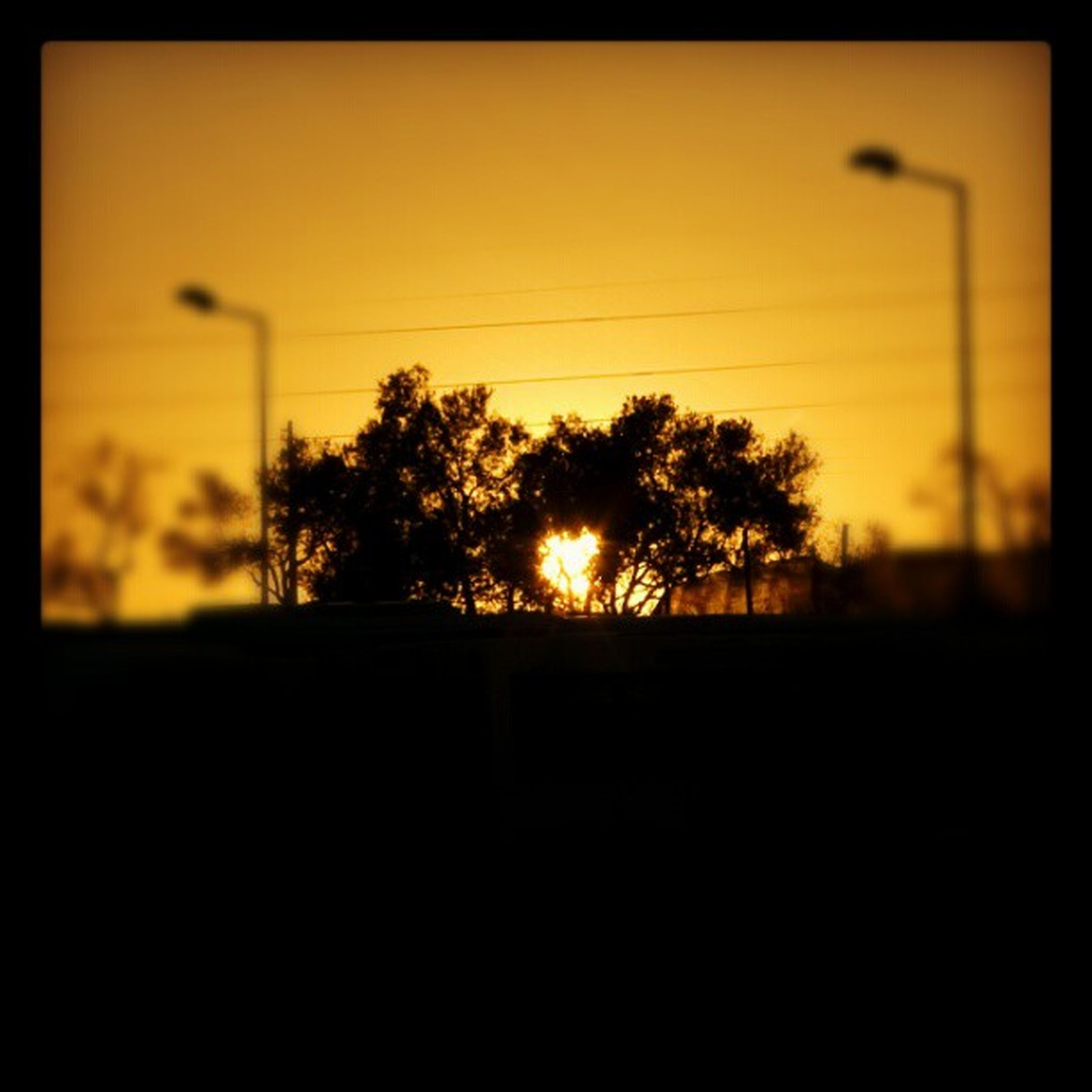 sunset, silhouette, orange color, sun, tree, tranquility, tranquil scene, scenics, beauty in nature, sky, dark, transfer print, nature, idyllic, copy space, landscape, outline, sunlight, auto post production filter, clear sky