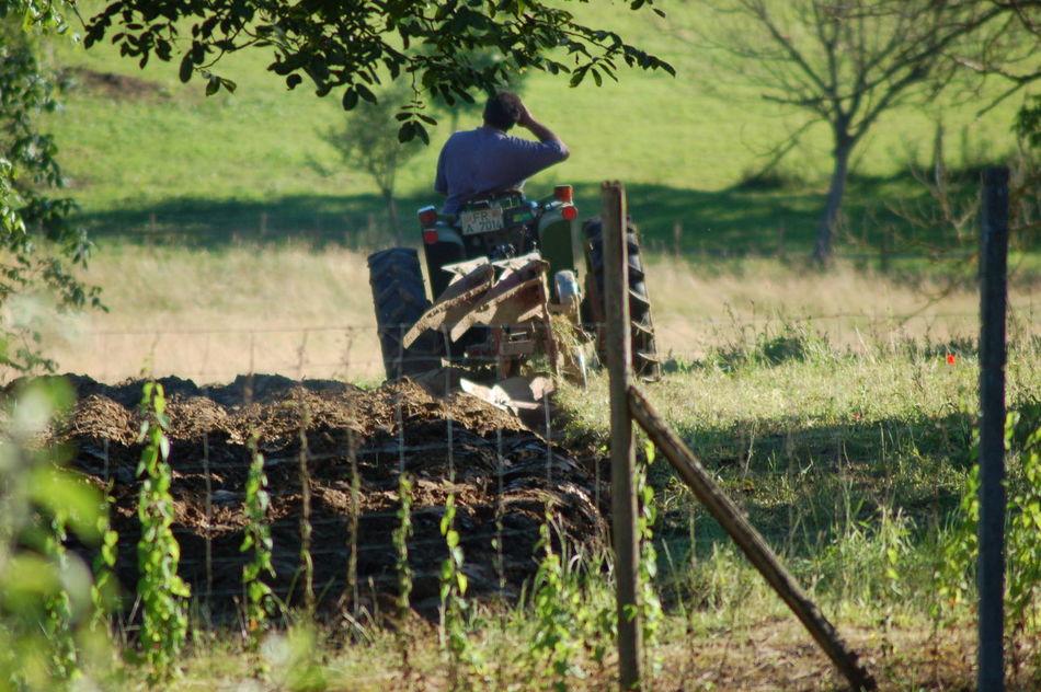 Farmer Farming work Plough Summer Work bauer Bauer Müllheim Südbaden