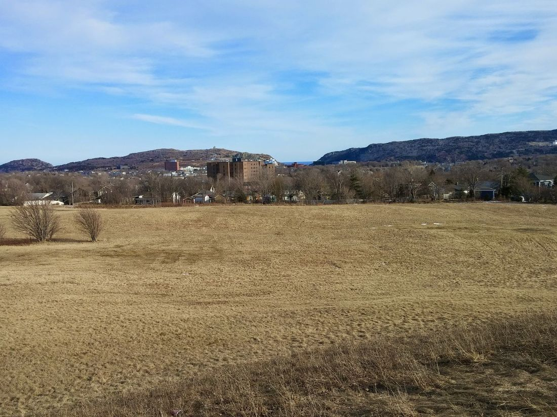 St.johns Endofseason Sunshine Midday Grass Field City Plain Field Trees After Winter Clouds Blue Sky Photography