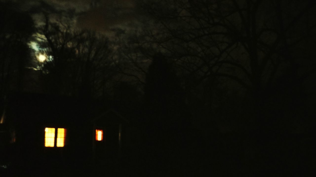 night, tree, house, no people, illuminated, architecture, built structure, outdoors, nature, sky