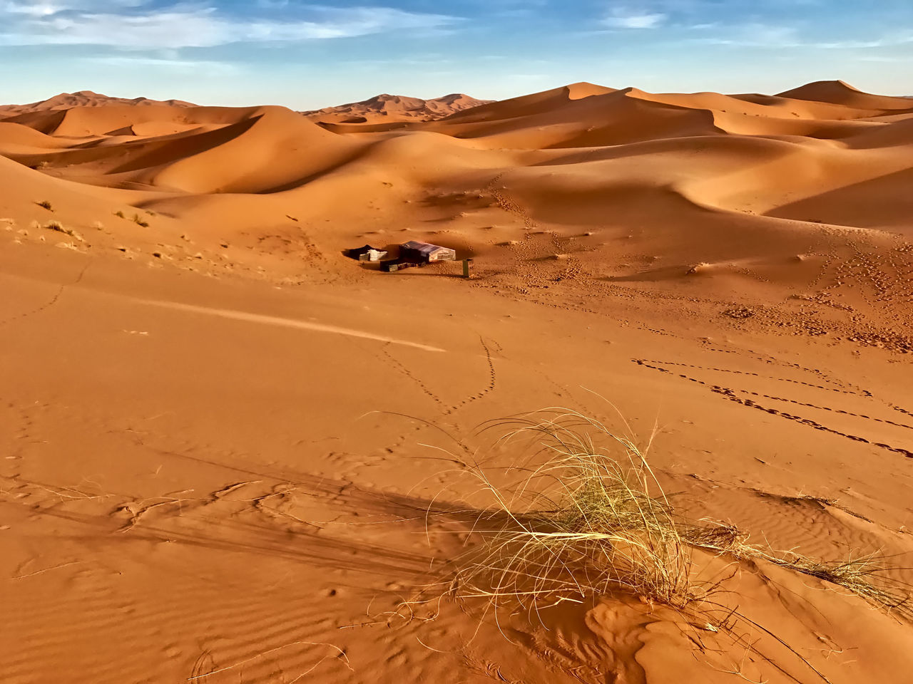 A Berber bivouac in the Sahara desert near Merzouga in Morocco. Beauty In Nature Berber  Bivouac Clouds Day Desert Grass Landscape Merzouga Morocco Nature No People Outdoors Sahara Sand Sand Dune Scenics Sky Sunlight Travel