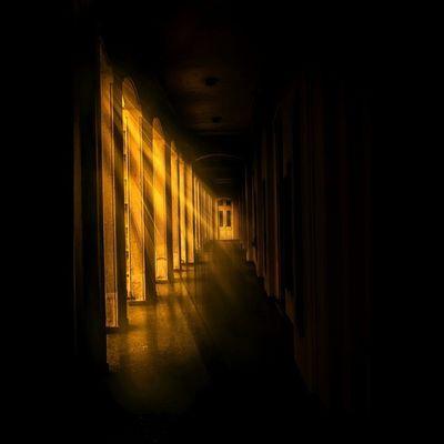 ESALQ. Esalq Piracicaba Nikon Light Parededevidro Photography