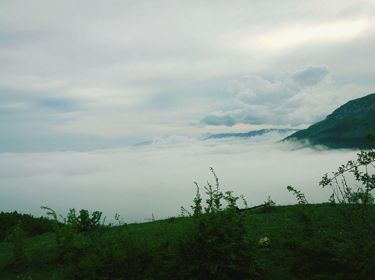 туман зелень  Природа природароссии горы