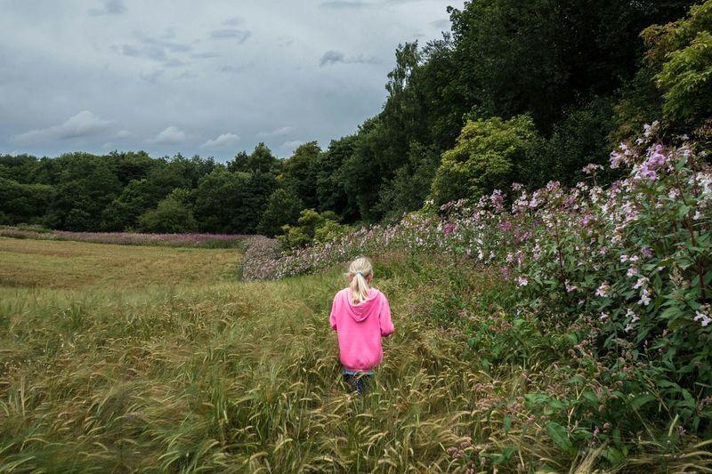 A walk on the wild side Wigan Hindley Walking