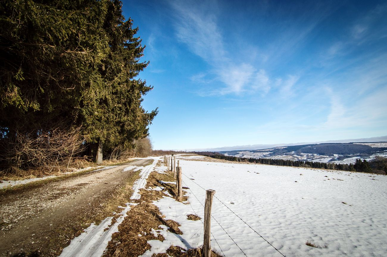 Snow Cold Temperature Winter Tree Landscape Outdoors Tire Track No People Sky Nature Beauty In Nature Day Wasserkuppe Rhön Idyllic Scenics