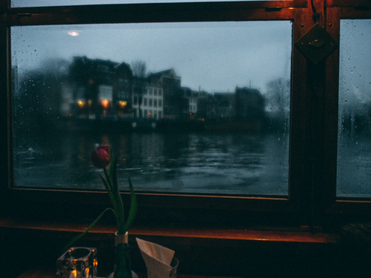Amsterdam Beauty In Nature Close-up Flower Fragility Nature Netherlands No People Plant Sky Still Life The Street Photographer - 2017 EyeEm Awards Water Window