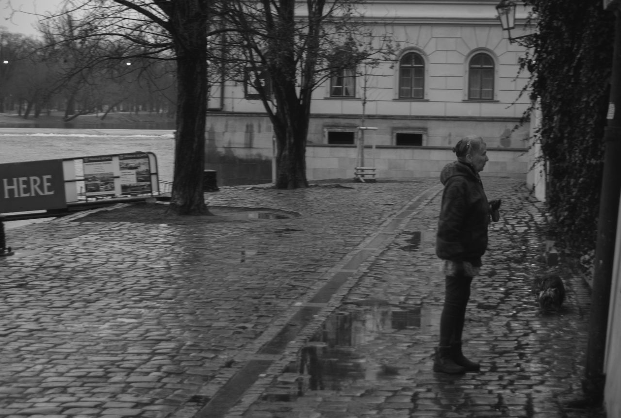 full length, architecture, built structure, walking, building exterior, real people, street, one person, water, transportation, outdoors, weather, wet, bare tree, puddle, road, tree, day, standing, women, nature, young adult, city, sky, adult, people