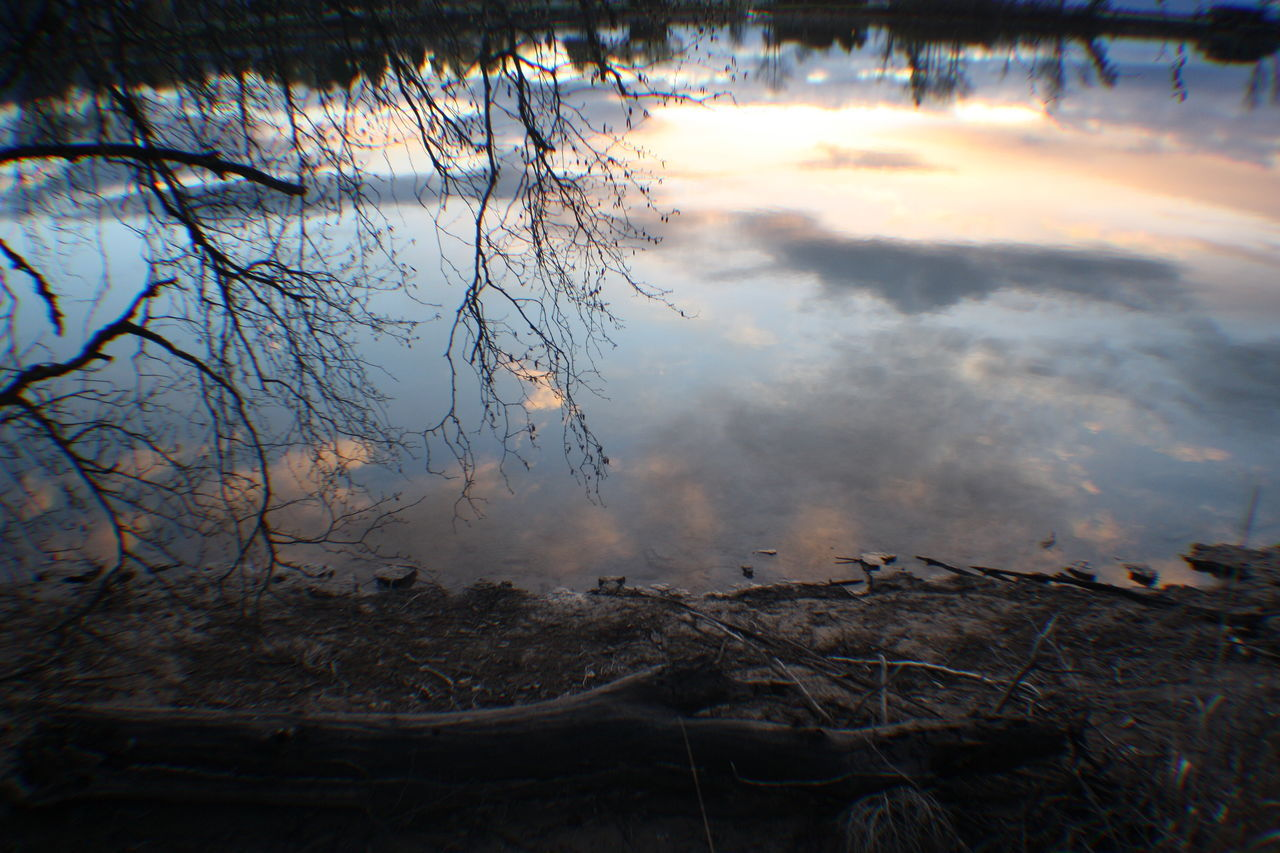 no people, nature, water, reflection, outdoors, tranquility, lake, day, bare tree, beauty in nature, tree, close-up, sky