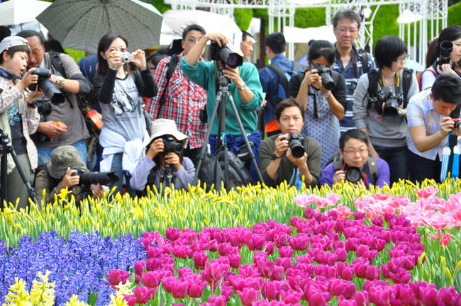 Crowd Enjoyment Flower Flower Exhibition Fun Growth Large Group Of People Leisure Activity Lifestyles Mixed Age Range Outdoors Plant Camera - Photographic Equipment Photographer Photoshoot A Group Of People Multi Colored Colorful City Life