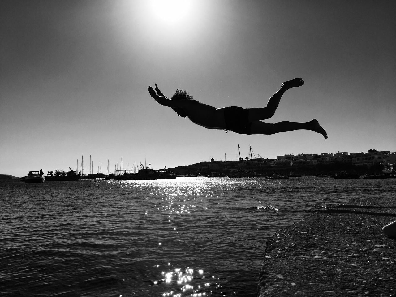 water, outdoors, silhouette, clear sky, sunlight, nature, day, sea, sky, animal themes, no people