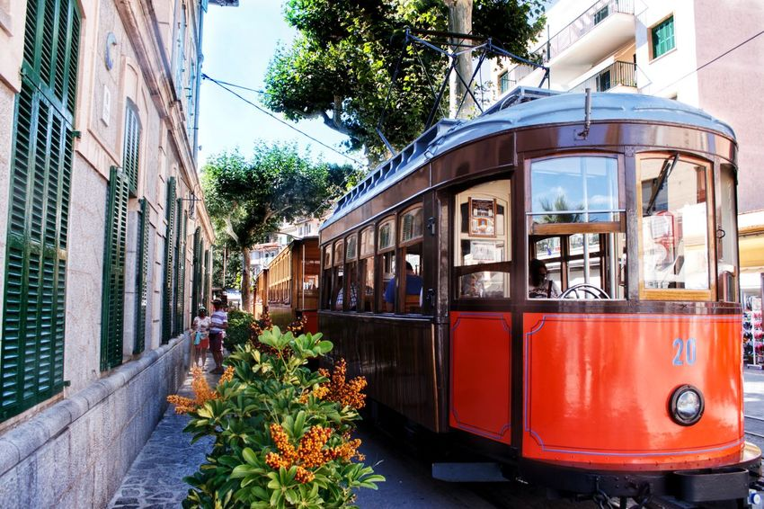 Historic tram / historische Straßenbahn - Port de Soller / Mallorca. Tram Historic Building Exterior Architecture Outdoors Street Day Transportation Historische Fahrzeuge Straßenbahn Mallorca Mallorcaphotographer Portdesóller Canonphotography Walking Around Taking Pictures Check This Out Taking Photos EyeEm Gallery Eyeemphotography EyeEm Selects Baleares Balearic Islands Flower Tree Built Structure
