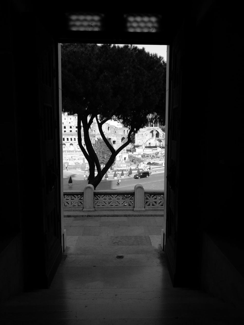 Window Door Day No People Architecture Rome Architecture EyeEm Gallery Leica Huawei P9 Roma Huawei P9. Color Photography Adults Only Altare Della Patria Altare_della_patria Indoors