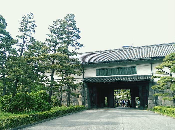 江戸城入るの初めてだ。